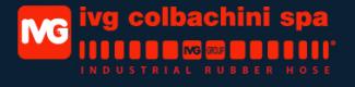 ivg_colbachini logo